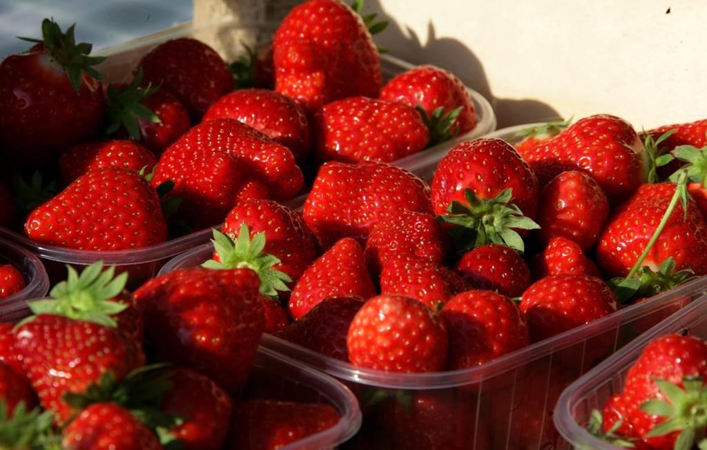Aux fraises de Bourcq
